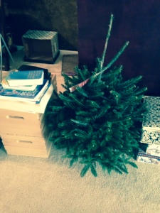 I managed to buy our tiny tree.  Will it be decorated before Christmas?  Maybe.  Maybe.